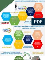 HABILIDADES GERENCIALES PARA UN LIDERAZGO EFECTIVO.pdf