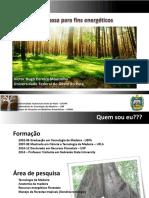 2017 01 Palestra Biomassa Para Fins Energéticos - Ciclo Debates