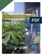 tesis_hojasyuca.pdf