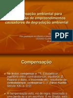 Palestra Compensacao Cesusc 09