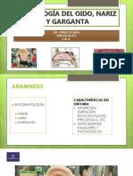 Semio Otorrinolaringologia 2017 (1)