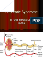 Nephrotic Syndrome 15-3-16