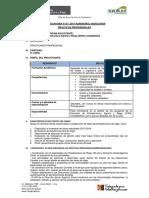 Cajamarca1.pdf
