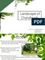 Chandigarh Landscape