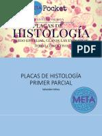 Folleto Histologia Practica META-1