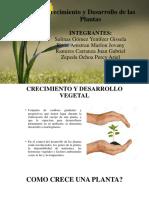 Crecimiento y Desarrollo de Planta (1)