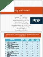 Program Laktasi