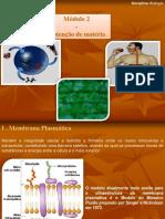 Mdulo2 Obtenodematria 131120100838 Phpapp01