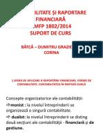 Contabilitate Și Raportare Financiară