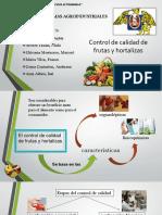 frutas y hortaliizas.pptx
