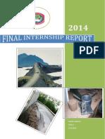 Internship_final_report.pdf