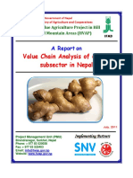 HVAP VCA-Reports Ginger