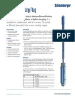 A Series Blanking Plug