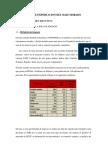 154668358-Plan-de-Exportacion-Del-Maiz-Morado.docx