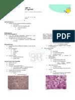 Non Neoplastic Liver