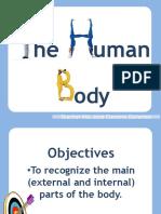 Human Body Simple
