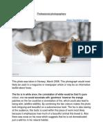 lo1- understanding professional photographs