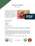 2015-Dec-02-10-21-58_36_file_aguaymanto-deshidratado (1).pdf