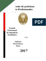 Informe de Prácticas Pre-Profesionales