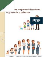Schimbarea, Creşterea Şi Dezvoltarea Organismului La Pubertate