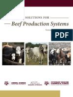 beef_plan_web.pdf