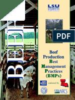 Beef-BMPs-LSU-7-07.pdf