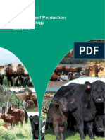 Beef-Industry-National-RD-and-E-Strategy.pdf