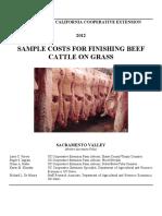 beefsv2012.pdf