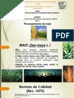 3 Procesamiento de Maiz