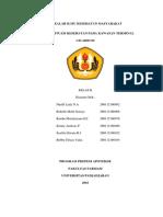 MAKALAH ILMU KESEHATAN MASYARAKAT.docx