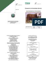 Evaluación de Sementales Bovinos