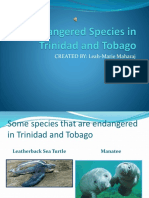 Endangered Species in Trinidad and Tobago