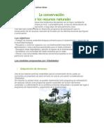 La Conservación