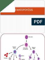 Clase 1 Hematopoyesis 2016