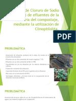 Remoción de Cloruro de Sodio (NaCl)