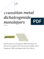 Transition Metal Dichalcogenide Monolayers