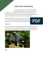 Virus Yang Sering Menyerang Burung