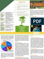 LCDS Brochure