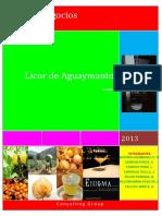 191815850-Licor-de-Aguaymanto-COMPLETO.pdf