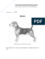 FEDERATION CYNOLOGIQUE INTERNATIONALE BEAGLE.pdf