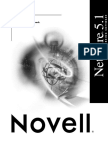 Audit Novell