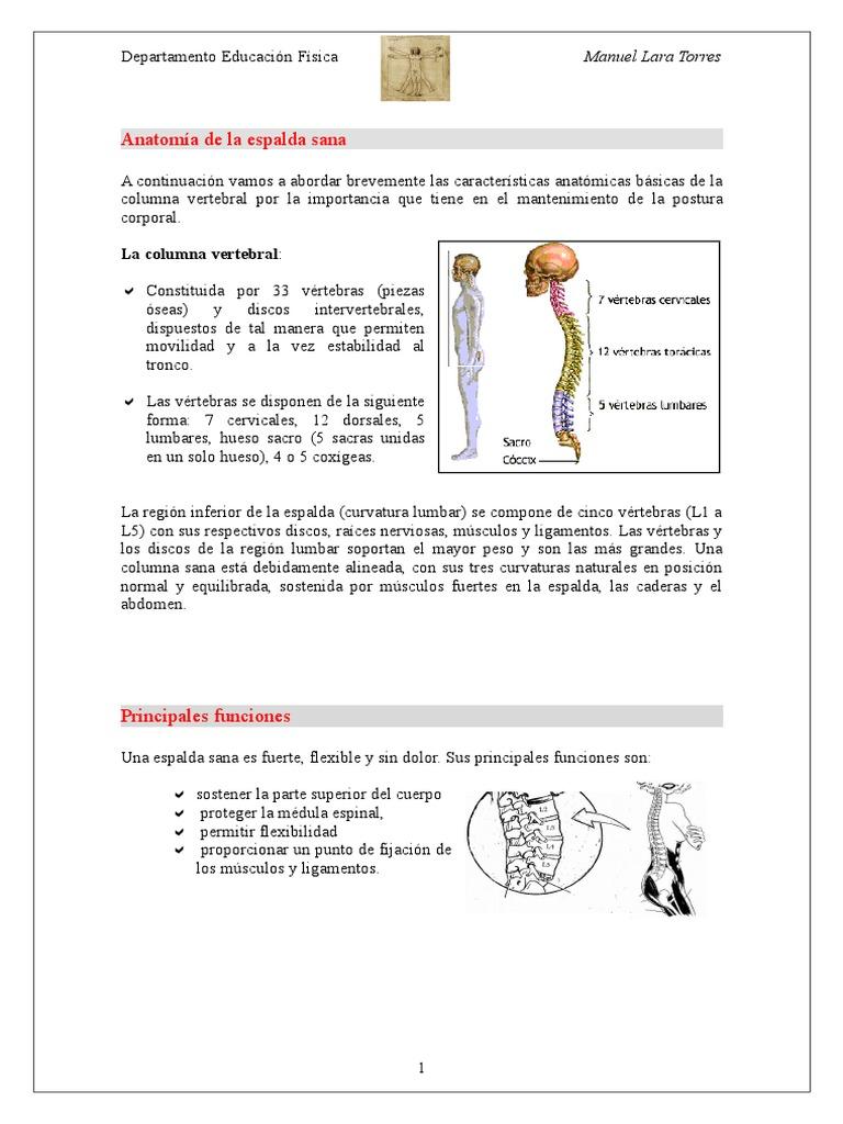 3º ESO HIGIENE POSTURAL ESPALDA + ACROSPORT