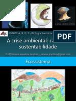 Aula 09.10.2013 - A Crise Ambiental