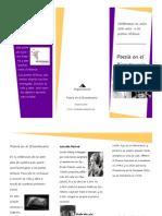 Folleto informativo Poesía en el Bicentenario
