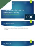 Proceso de Atención de Enfermería (PAE)