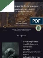 momosz10_kiraly_gyaszfeldolgozas.pptx