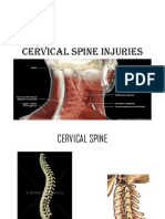 cspineinjuriesdr-131029122158-phpapp01