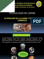 12-ALTERACIONES-DE-CARNE.ppt