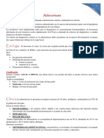 Ginecologia-Adenomiosis