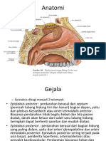 Anatomi hidung ppt